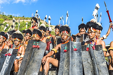 Performers gathered at the Hornbill Festival, Kohima, Nagaland, India, Asia