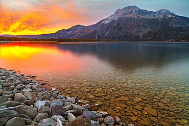 Sunrise at Driftwood Beach with Vimy Peak in the background, Waterton Lakes National Park, Alberta, Canada, North America