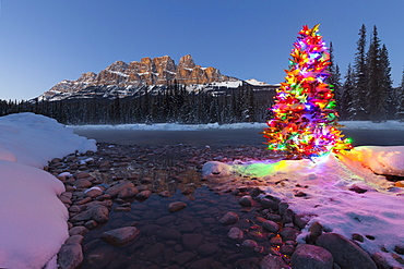 Christmas Tree, Castle Mountain and the Bow River in Winter, Banff National Park, Alberta, Canada, North America