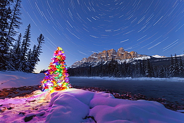 Christmas Tree and Star Trails at Castle Mountain in Winter, Banff National Park, Alberta, Canada, North America
