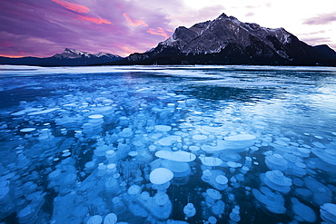 Bubbles and Cracks in the Ice with Mount Michener and Kista Peak in the Background at Sunrise, Abraham Lake, Alberta, Canada, North America