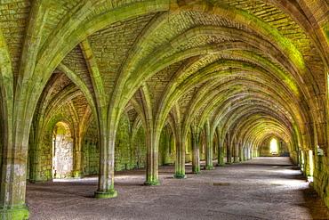 The Cellarium, Fountains Abbey, UNESCO World Heritage Site, North Yorkshire, Yorkshire, England, United Kingdom, Europe