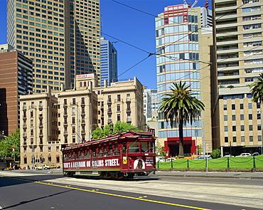 A tram on Macarthur Street in Melbourne, Victoria, Australia, Pacific