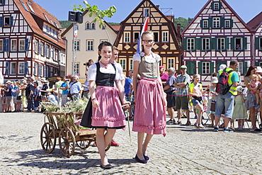 Historical parade at Bad Urach Schaferlauf, Bad Urach Swabian Alb, Baden Wurttemberg, Germany, Europe