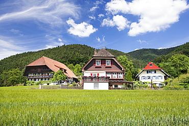 Black Forest houses, Gutachtal Valley, Black Forest, Baden Wurttemberg, Germany, Europe