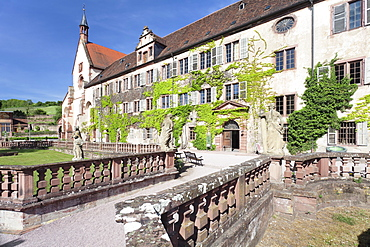 Bronnbach Cistercian monastery, Taubertal Valley, Romantic Road (Romantische Stravue), Baden Wurttemberg, Germany, Europe