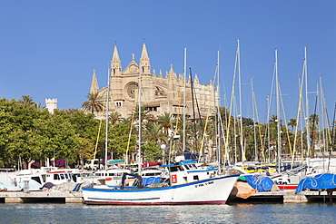 Fishing harbour and Cathedral of Santa Maria of Palma (La Seu), Palma de  Mallorca, Majorca, Balearic Islands, Spain, Mediterranean, Europe