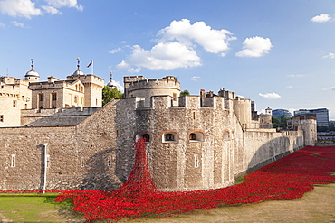 Tower of London, Installation Blood Swept Lands and Seas of Red, World War I memorial, City of London, London, England, United Kingdom, Europe