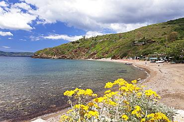 Innamorata beach, Golfo Stella, Island of Elba, Livorno Province, Tuscany, Italy, Europe