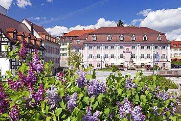 Donaueschingen, Black Forest, Baden Wurttemberg, Germany, Europe