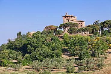 Palazzo Massaini, Pienza, Val d'Orcia (Orcia Valley), UNESCO World Heritage Site, Siena Province, Tuscany, Italy, Europe