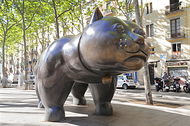 The cat (El Gat) sculpture by Botero, Rambla del Raval, Barcelona, Catalonia, Spain, Europe