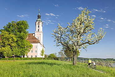 Birnau Pilgrimage Church, Unteruhldingen, Lake Constance, Baden-Wurttemberg, Germany, Europe