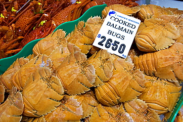 Cooked Balmain Bugs for sale at Sydney Fish Market, Darling Harbour, Australia