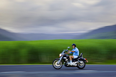Motorcyclist passes sugar cane field at Freshwater Connection, Australia