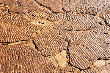 Ripple marks preserved in the Mereenie sandstone at King's Canyon, Northern Territory, Australia
