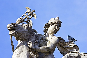 Pigeon rests on horse and rider statue in Place de la Concorde, Paris, France