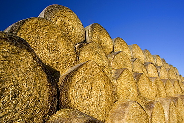 Stacked strawbales, The Cotswolds, Oxfordshire, United Kingdom