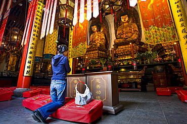 Woman prays to Golden Buddhas in the Grand Hall of Magnificence of the Jade Buddha Temple, Shanghai, China