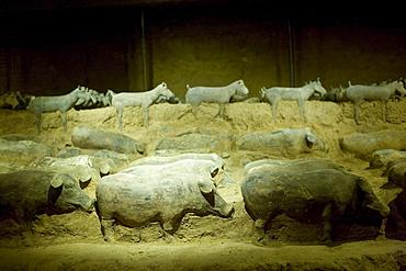 Terracotta animal figures at the Han Dynasty Tomb of Han Yang Ling, Xian, China