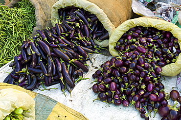Old Delhi, Daryagang fruit and vegetable market, aubergines, eggplants and green beans on sale, India