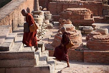 Buddhist monks visiting Dharmarajika Stupa at Sarnath ruins near Varanasi, Benares, Northern India