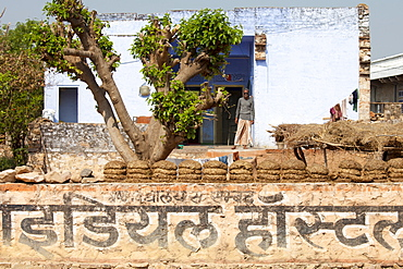 Indian villager at home with dried cow dung for fuel in Sawai Madhopur in Rajasthan, Northern India