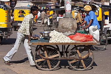 Garlic seller in street scene at Sardar Market at Girdikot, Jodhpur, Rajasthan, Northern India