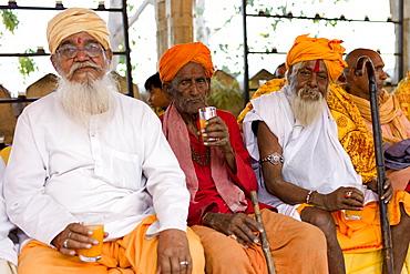 Hindu priests at Holi festival of 76th Maharana of Mewar, Shriji Arvind Singh Mewar of Udaipur, at the City Palace, Rajasthan, India