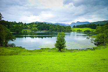 Loughrigg Tarn lake in the Lake District National Park, Cumbria, UK