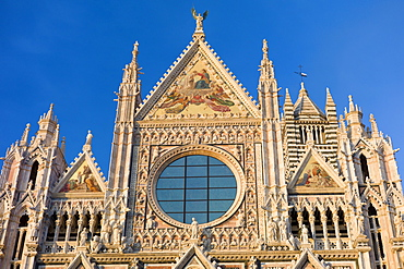 Il Duomo di Siena, the Cathedral of Siena, Italy
