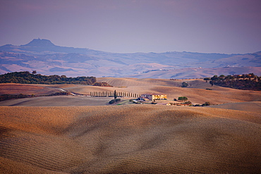 Typical Tuscan landscape near San Quirico D'Orcia  in Val D'Orcia, Tuscany, Italy