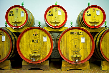 La Fornace Brunello di Montalcino wine stored in barrique barrels at the wine estate of La Fornace in Val D'Orcia, Tuscany, Italy
