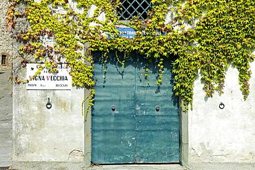 Vigna Vecchia factory for Chianti Classico wine in Radda-in-Chianti, Tuscany, Italy