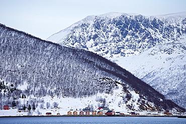 Homes and fishing huts  in hamlet across fjord from Sandneshamnvegen 862 on Kvaloya Island, Tromso, Arctic Circle, Northern Norway