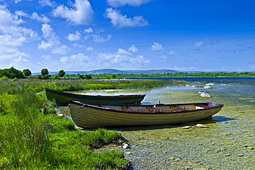 Boats among the reeds at Lough Muckanagh, County Clare, West of Ireland