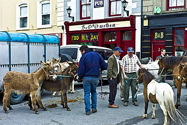 Horse fair in market square in Kilrush, Co. Clare, Ireland. Traditional for locals and travellers to trade horses and donkeys