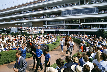 Horseracing scene at Woodbine Racetrack in Coburg, Canada