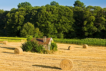 Typical stone barn in wheat field in the Dordogne, France