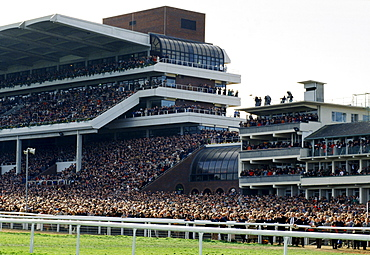 Waiting for the big race. Spectactors in the grandstand at Cheltenham Racecourse for the National Hunt Festival of Racing, UK