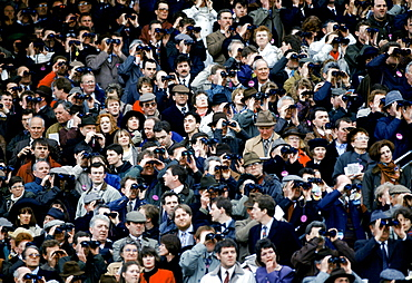 Spectactors in grandstand at Cheltenham Racecourse for the National Hunt Festival of Racing, UK