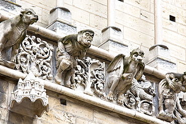 Gargoyles at the Notre Dame Cathedral in Dijon in the Burgundy region, France, Europe