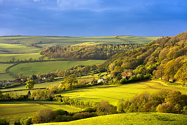 Rolling hills in Exmoor National Park in Somerset, England, United Kingdom, Europe