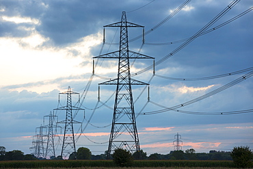 Electricity pylons and power cables a sculptural a blot on the landscape, Oxfordshire, England, United Kingdom, Europe