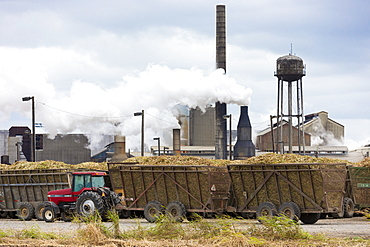 Sugarcane production factory St Mary Sugar Cooperative Sugar Mill processing raw sugar at Jeanerette, Louisiana, USA