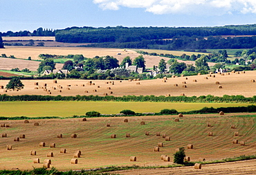 Rural England - meadows and trees around the village of Swinbrook in Oxfordshire part of the Cotswold area popular with tourists, United Kingdom