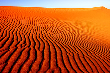 Desert dunes, Punta Norte, Peninsula Valdes, Patagonia, Argentina, South America