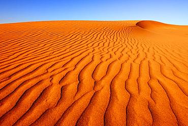Dune, Peninsula Valdes, Patagonia, Argentina, South America
