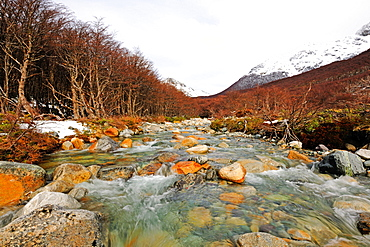 Patagonic landscape, river, Patagonia, Argentina, South America