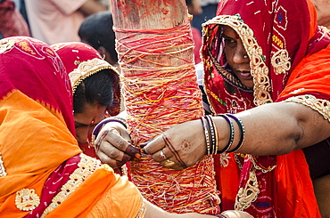 Women apply string to the Holi chir, a traditional morning ceremony, during Holi festival celebrations, Basantapur Durbar Square, Kathmandu, Nepal, Asia
